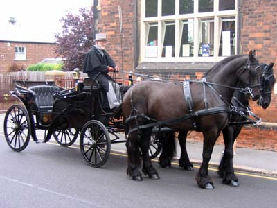 The horse and carriage.